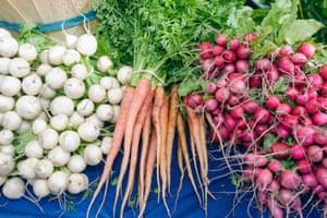 Marion Square Farmers Market, fresh produce local products artisans crafts radish and carrots, Charleston South Carolina
