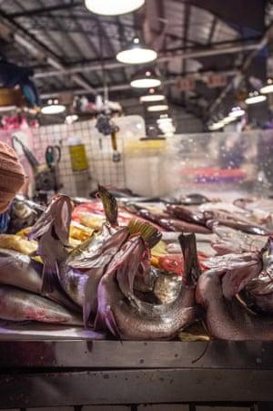 Fish at Taipei fish market
